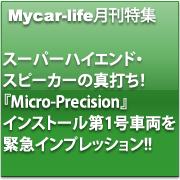fig_h2_Micro-Precision